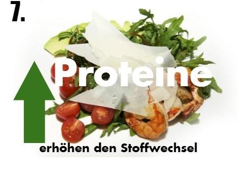 Proteine kurbeln den Stoffwechsel an