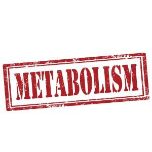 Stoffwechsel ankurbeln mit Metabolism