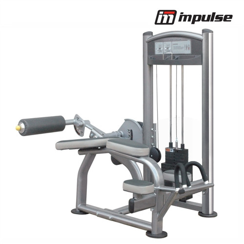 Impulse Fitness Proone leg curl IT9321 ( 91 kg )