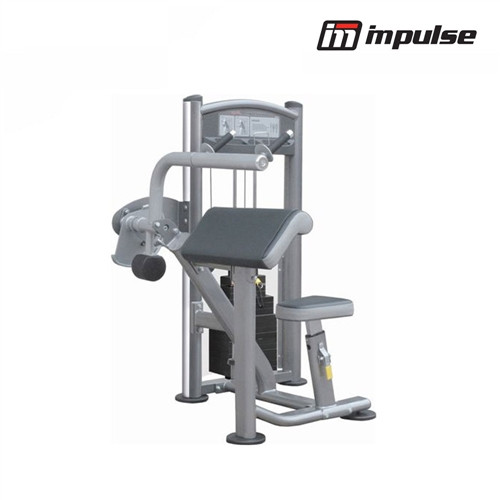 Impulse Fitness Arm extension IT9323 ( 68 kg)