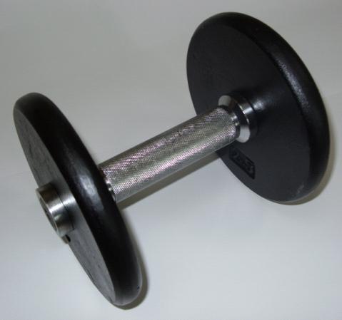 Kompakthanteln Guss 12,5 kg