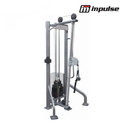Impulse Fitness hi/low Zugstation IT9325A (125 kg )