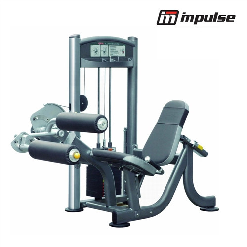 Impulse Fitness Seated Leg Curl IT9307 (91 kg)