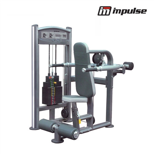 Impulse Fitness IMPULSE Seated Dip IT9317 ( 91 kg )