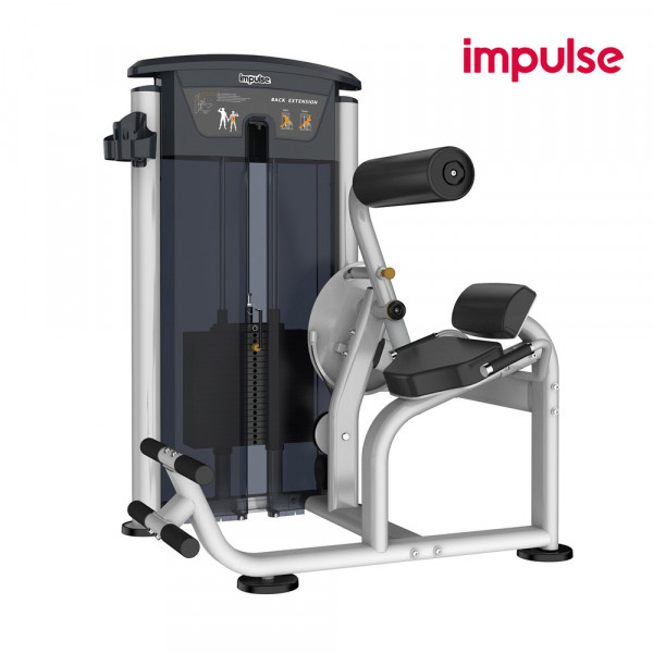 Impulse Fitness IT9532 Back Extension (134 kg)