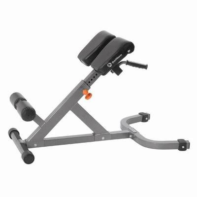 Impulse Fitness Hyperextensions Rückenstrecker IF-45°