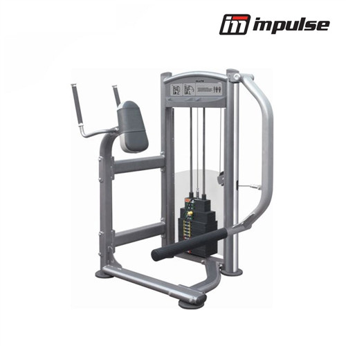 Impulse Fitness Glute IT9326 (91 kg )