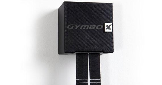 Variosports Gymbox ( ohne Zubehör )